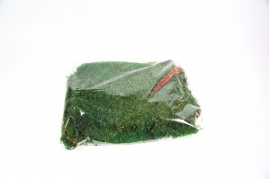 Preserved flat moss green (in bag)