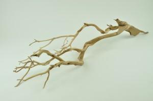 Manzanita tree 90 cm