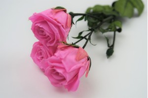 Preserved Spray rose 3 heads XS (2-3 cm) pink
