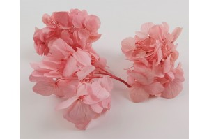 Preserved sprig hydrangea light pink