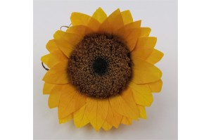 Preserved sunflower L (6 cm) - yellow