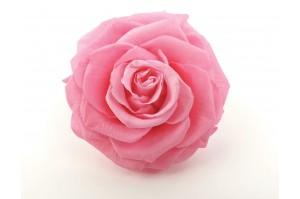 Preserved Rose heads L (5-6.5 cm) light pink