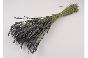 Dried Provencal lavendin natural