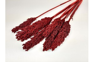 Dried sorghum Red