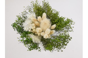 Dried flowers bouquet white  (Size S)