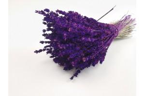 Preserved lavender purple (6)