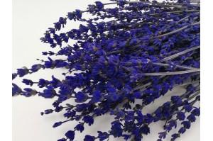 Preserved lavender natural (7)