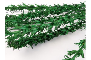 Dried small lily - green (20)