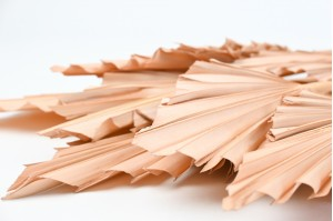 Dried palm spear sand color  (8)