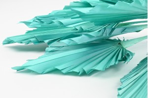 Dried palm spear turquoise blue (8)