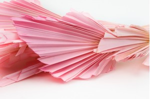 Dried palm spear light pink (8)