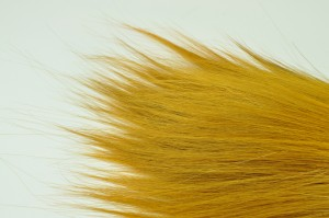 Preserved Barba yellow