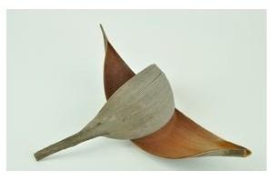 Decorative wood - Wholesaler - Wholesale / Online Purchase