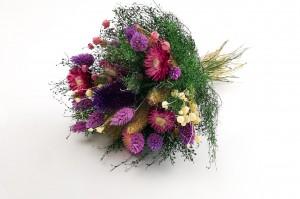 Dried Flowers Bouquet - Wholesaler - Wholesale / Online Purchase