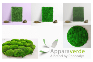 Preserved vegetated modules for decoration professionals.